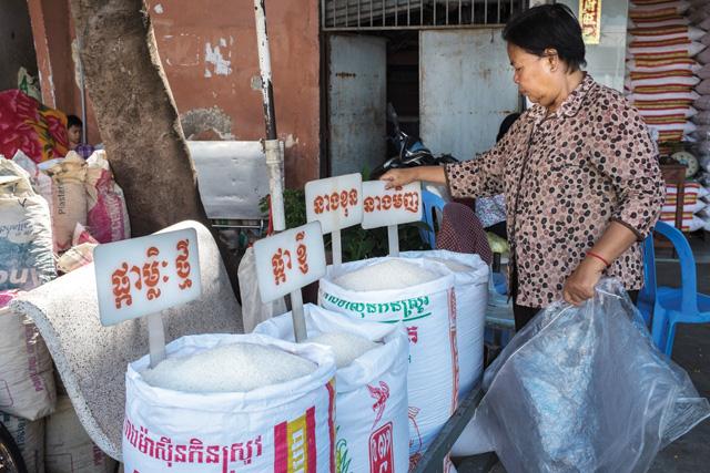 rice, phnom penh, cambodia