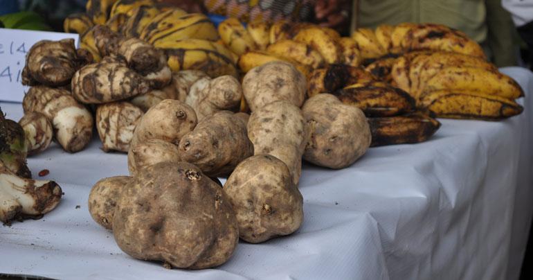 root vegetables_Timor-Leste_Southeast Asia Globe 2018