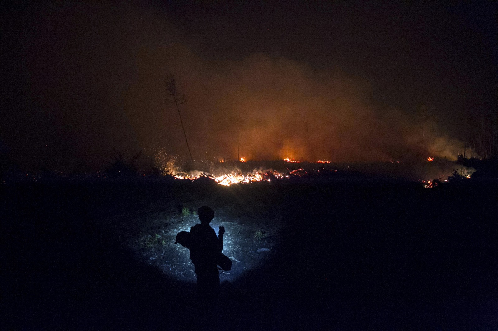 An Indonesian resident using a flashlight inspects a wildfire in a peatland, on the outskirts of Palangkaraya, Central Kalimantan, Indonesia. Photo: EPA/Fully Handoko