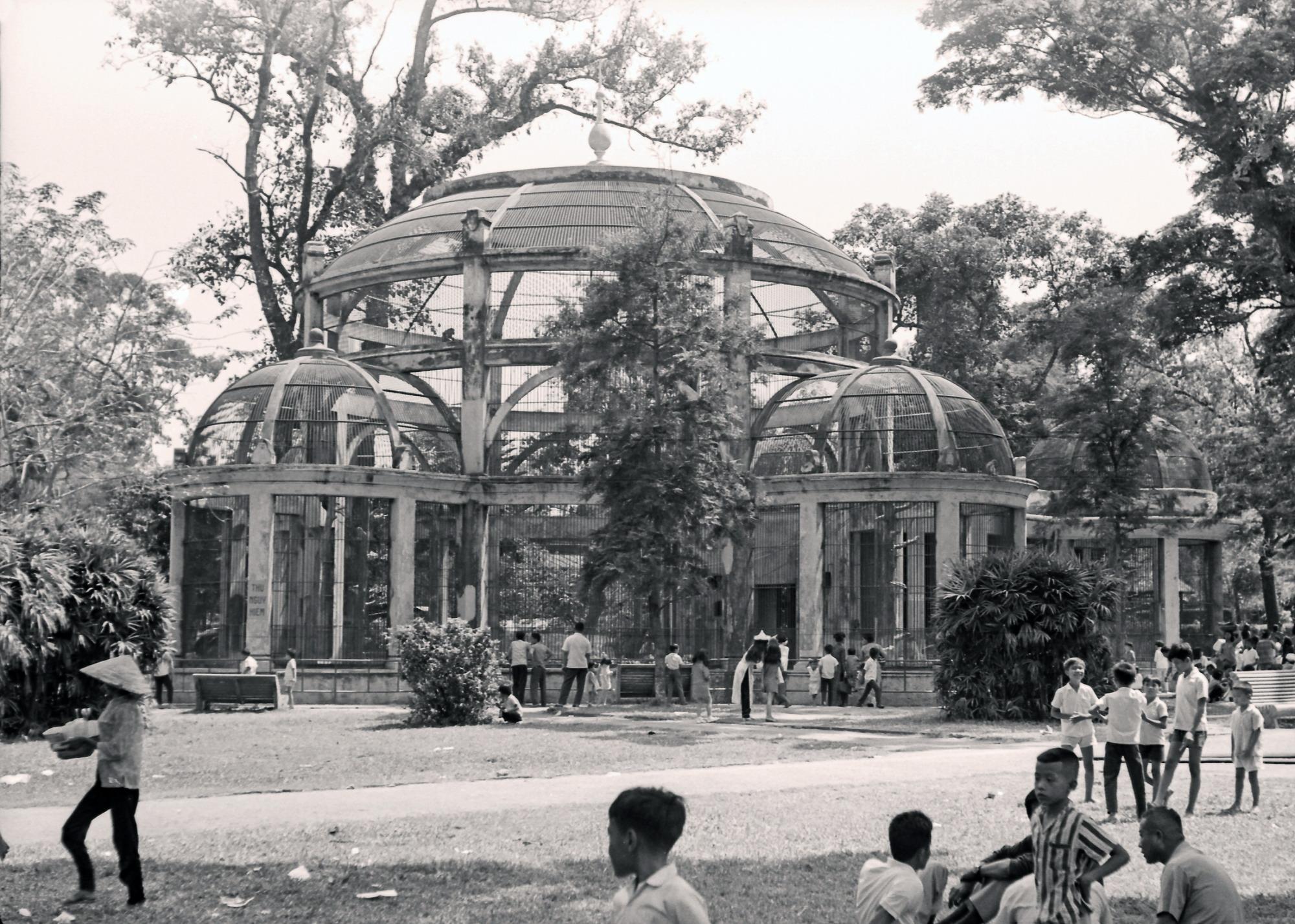 [Photos] The Saigon Zoo's enduring serenity in the 1970s